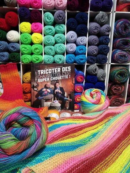 Le livre «Tricoter des Chaussettes…